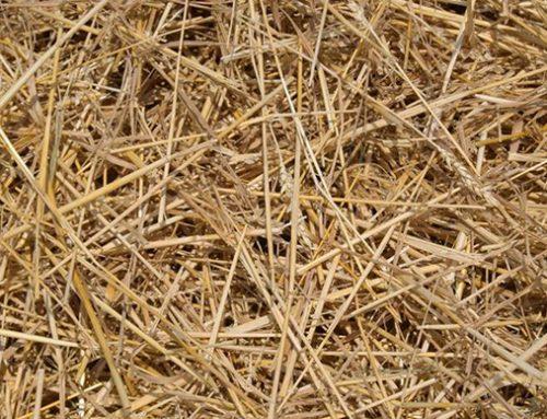 Hay & Straw Stock Notice
